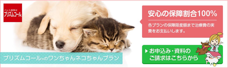 プリズムコールのワンちゃんネコちゃんプラン